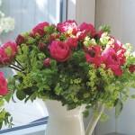 """ვარდი """"MAGIC ROKOKO"""" ( ROSE MAGIC ROKOKO) ზრდასრული მცენარე კონტეინერით"""