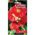 """აბილილი """"Scarlet O'Hara"""" (Ipomoea purpurea) თესლი"""